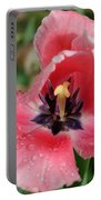 Spring Tulips 90 Portable Battery Charger