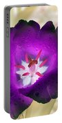 Spring Tulips - Photopower 3028 Portable Battery Charger