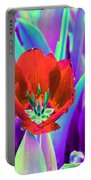 Spring Tulips - Photopower 3146 Portable Battery Charger