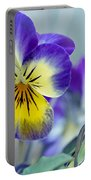 Spring Violas Portable Battery Charger