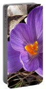 Spring Violet Portable Battery Charger