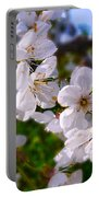 Spring White Portable Battery Charger