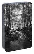Spring Wood Portable Battery Charger