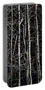 Spring Woods Simulated Woodcut Portable Battery Charger
