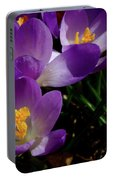 Springs First Flowers Portable Battery Charger