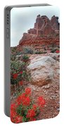Springtime At Arches National Park Portable Battery Charger