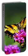 Springtime Butterfly Portable Battery Charger