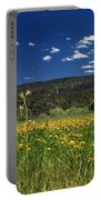 Springtime In Hat Creek Portable Battery Charger
