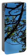 Springtime In The City Portable Battery Charger