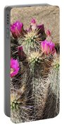 Springtime In The Desert Portable Battery Charger