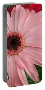 Square Framed Pink Daisy Portable Battery Charger