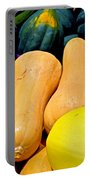 Squashes Portable Battery Charger