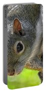 Squirrel 4 Portable Battery Charger