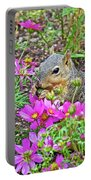 Squirrel Among Coreopsis In Huntington Gardens In San Marino-california   Portable Battery Charger