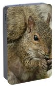 Squirrel And Nuts Portable Battery Charger