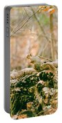 Squirrel In The Woods  Portable Battery Charger