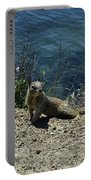 Squirrel Looking Back Over His Shoulder On The Coast Portable Battery Charger