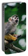 Squirrel Monkey Looking Up Portable Battery Charger