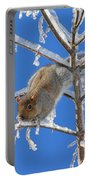 Squirrel On Icy Branches Portable Battery Charger