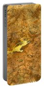 Squirrel On The Ground Portable Battery Charger