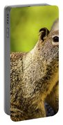 Squirrel On The Rock Portable Battery Charger