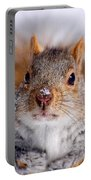 Squirrel Portrait Portable Battery Charger