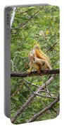 Squirrel Standoff Portable Battery Charger