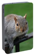 Squirrel Watching Portable Battery Charger