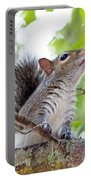 Squirrel With Personality Portable Battery Charger