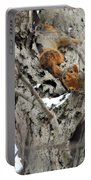 Squirrels At Play Portable Battery Charger