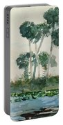 St John's River Florida Portable Battery Charger