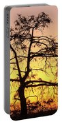 St Johns River Tree Portable Battery Charger