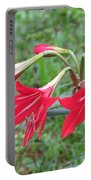 St. Joseph's Lily Portable Battery Charger