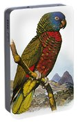 St Lucia Amazon Parrot Portable Battery Charger
