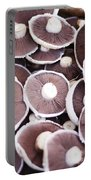 Stacked Mushrooms Portable Battery Charger