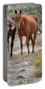 Stallion And Mare Portable Battery Charger
