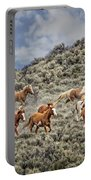 Stampede In The Sage Portable Battery Charger