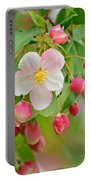 Stand Alone Japanese Cherry Blossom Portable Battery Charger