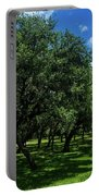 Stand Of Oaks Portable Battery Charger