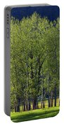 Stand Of Trees Yosemite Valley Portable Battery Charger
