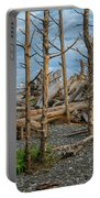 Standing Driftwood Portable Battery Charger