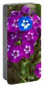 Standing Out From The Crowd Portable Battery Charger