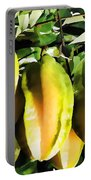Star Apple Fruit On Tree Portable Battery Charger