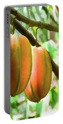 Star Fruit On The Tree Portable Battery Charger