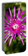 Starburst Of The Wildflowers Portable Battery Charger