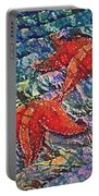 Starfish 2 Portable Battery Charger