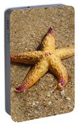 Starfish Portable Battery Charger by Mamie Thornbrue