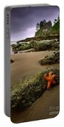 Starfish On The Rocks Portable Battery Charger