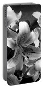 Stargazer Lilies Bw Portable Battery Charger