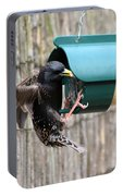 Starling On Bird Feeder Portable Battery Charger